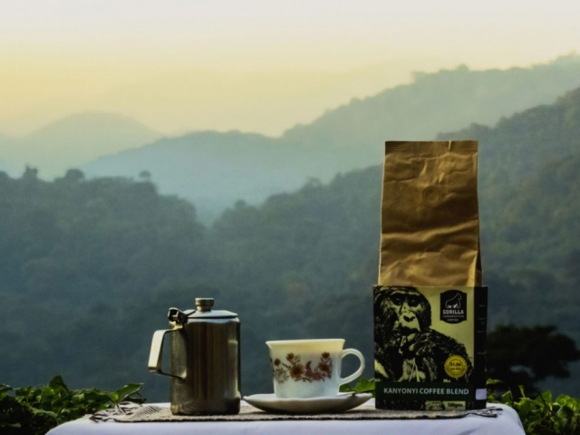 Fresh Gorilla Conservation Coffee. View of Bwindi Impenetrable Forest